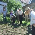 Nyílt nap a csorvási Gulyás Mihály Iskola tanulókertjeiben