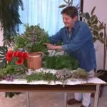 Biokonyha: Gyógy- és fűszernövények a mindennapjainkban (3. kép)
