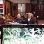 Biokertész előadások 8. Gyógy- és fűszernövény a kiskertben