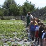 Iskolások látogatása Major Pál csorvási kertjében (10. kép)