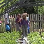 Iskolások látogatása Major Pál csorvási kertjében (11. kép)