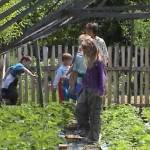 Iskolások látogatása Major Pál csorvási kertjében (12. kép)