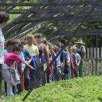 Iskolások látogatása Major Pál csorvási kertjében (14. kép)