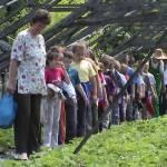 Iskolások látogatása Major Pál csorvási kertjében (15. kép)