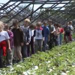 Iskolások látogatása Major Pál csorvási kertjében (19. kép)