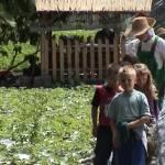Iskolások látogatása Major Pál csorvási kertjében (21. kép)