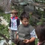 Iskolások látogatása Major Pál csorvási kertjében (27. kép)