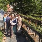 Iskolások látogatása Major Pál csorvási kertjében (5. kép)