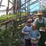Iskolások látogatása Major Pál csorvási kertjében (18. kép)