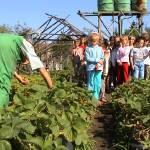 Iskolások látogatása Major Pál csorvási kertjében (8. kép)