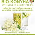 Biokonyha: Szörpök és gyümölcs dzsemek készítése tartósítószer nélkül